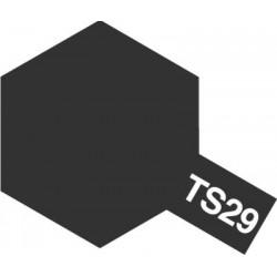 Peinture TS29 Noir satiné 100 ml