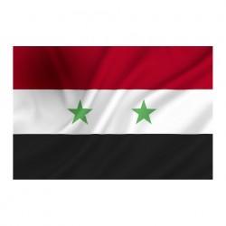 """Drapeau """"Syrie"""", 101 Inc"""