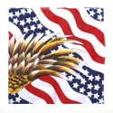 Bandana Drapeau USA avec eagle